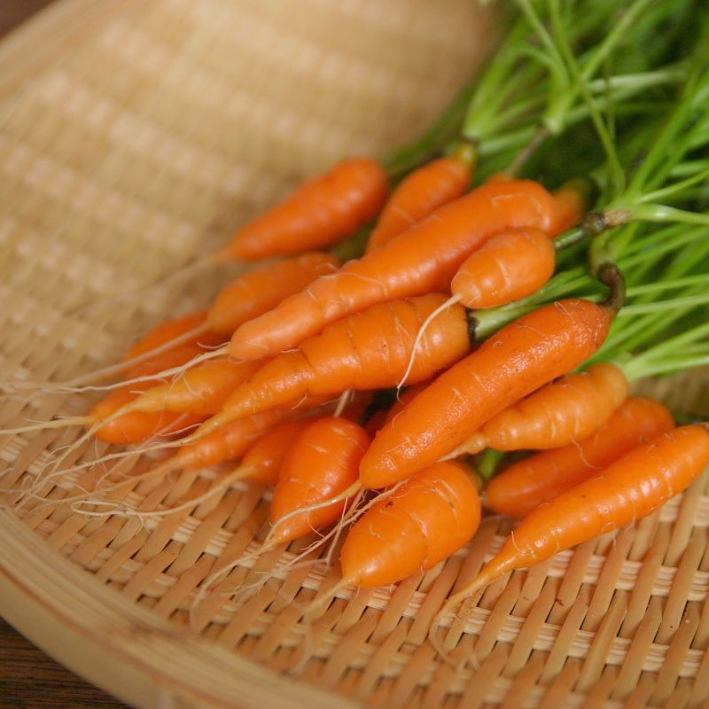 Baby carrots grow very quickly and can be harvested continually