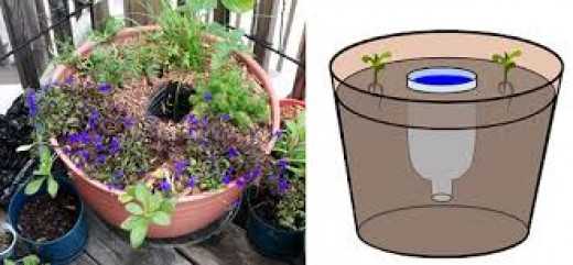 You can use plastic bottles as watering devices. There are plastic and terracotta spouts for bottles of various sizes