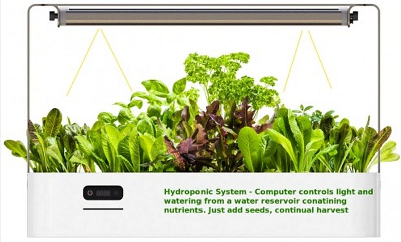 High-Tech mini hydroponic garden units are available that have computer controlled watering and lighting systems