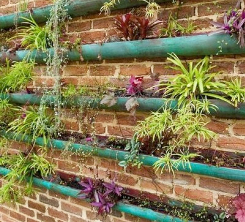 Large gardens can be attached to walls and fences saving space on the ground