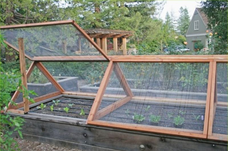 Frames with glass or plastic sheeting over raised beds provides optimal growing conditions and saves on water.