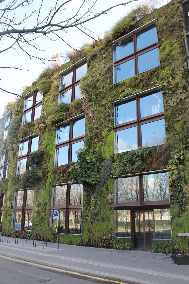 Vertical gardens can be used to clad walls and roofs as a design element