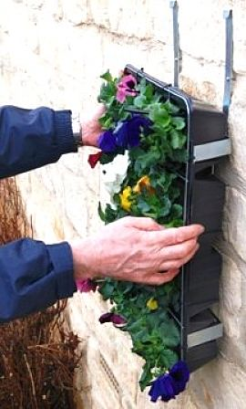 You can attach trays with in soil support to walls for a delightful display of vegetables and flowers