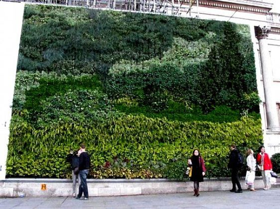 Vertical gardens attached to walls can be large and very elaborate. They can be used to grow vegetables vertically